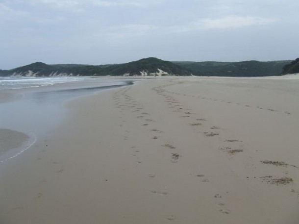 Strand im Eastern Cape